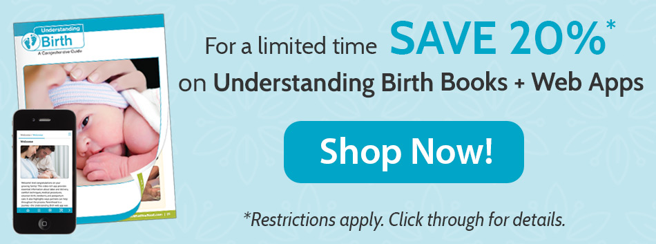 20% sale for the Understanding Book + Web App. Click for details